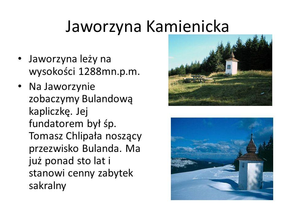 Jaworzyna Kamienicka Jaworzyna leży na wysokości 1288mn.p.m.