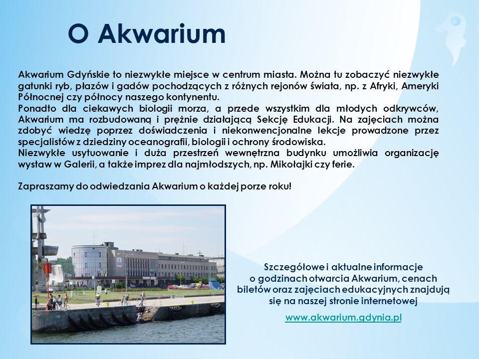 O Akwarium