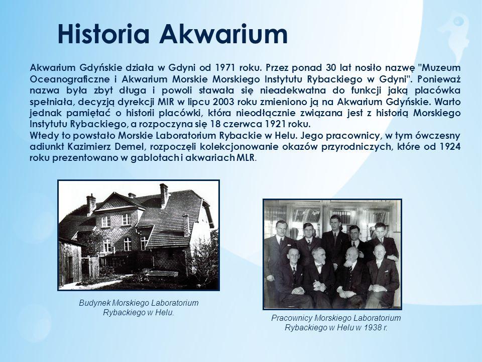 Historia Akwarium