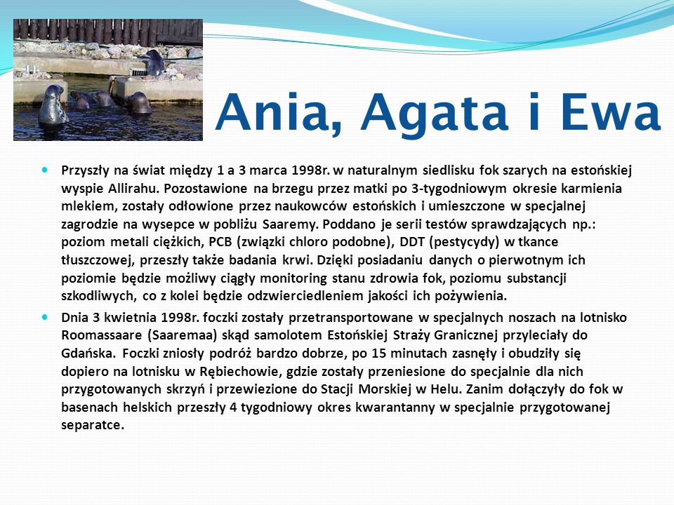 Ania, Agata i Ewa