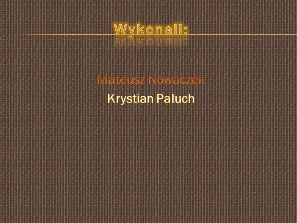 Mateusz Nowaczek Krystian Paluch