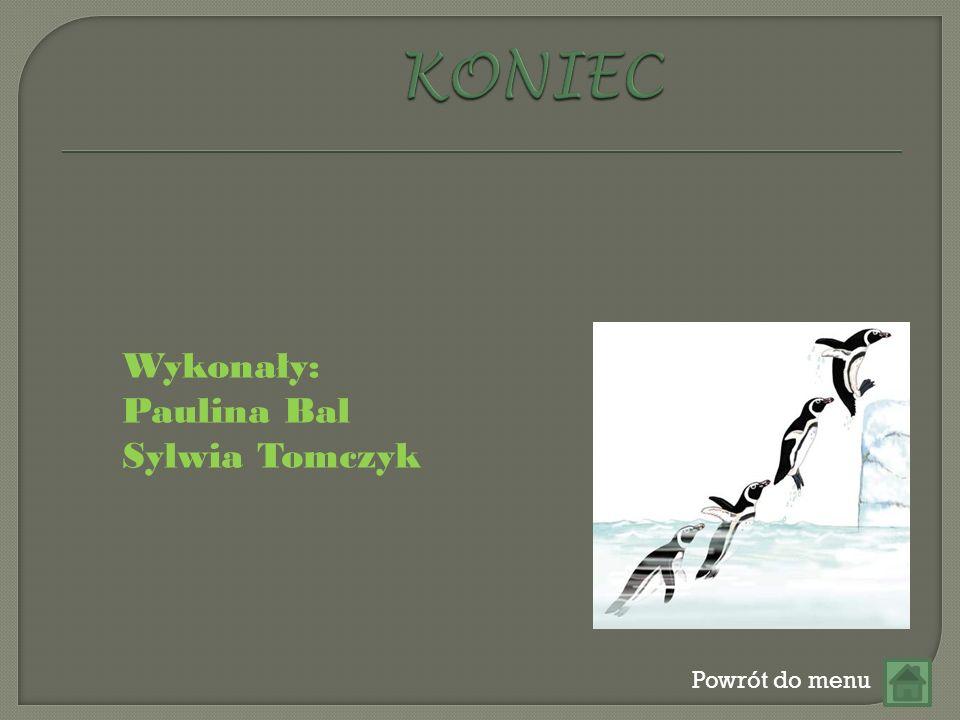 KONIEC Wykonały: Paulina Bal Sylwia Tomczyk Powrót do menu