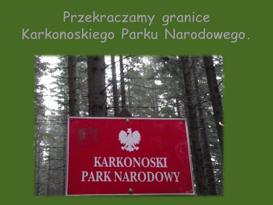 Przekraczamy granice Karkonoskiego Parku Narodowego.