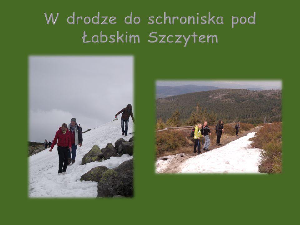W drodze do schroniska pod Łabskim Szczytem