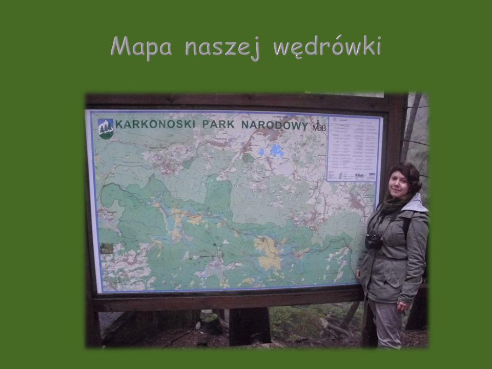 Mapa naszej wędrówki