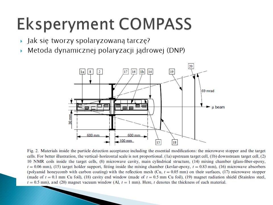 Eksperyment COMPASS Jak się tworzy spolaryzowaną tarczę