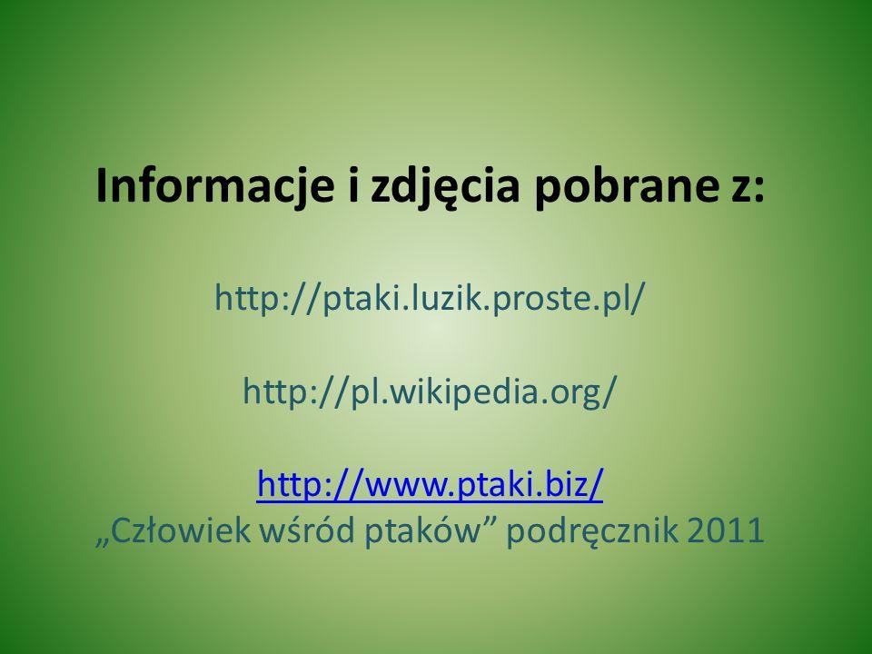 Informacje i zdjęcia pobrane z: http://ptaki. luzik. proste
