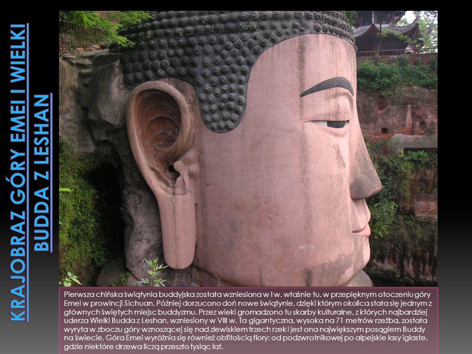 Krajobraz góry Emei i Wielki Budda z Leshan