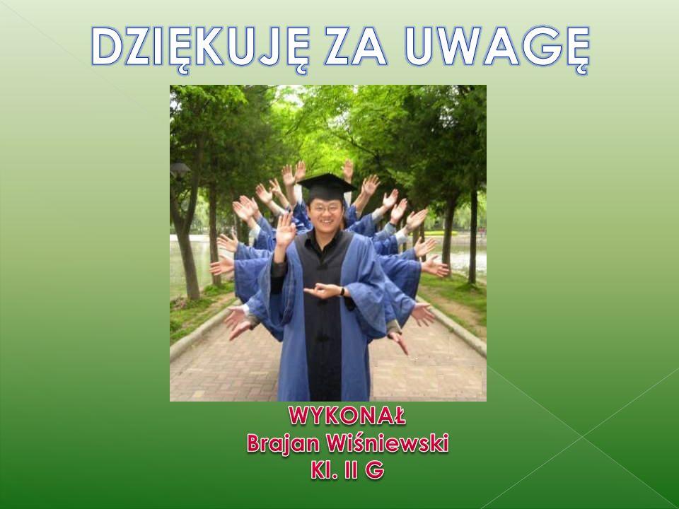 DZIĘKUJĘ ZA UWAGĘ WYKONAŁ Brajan Wiśniewski Kl. II G