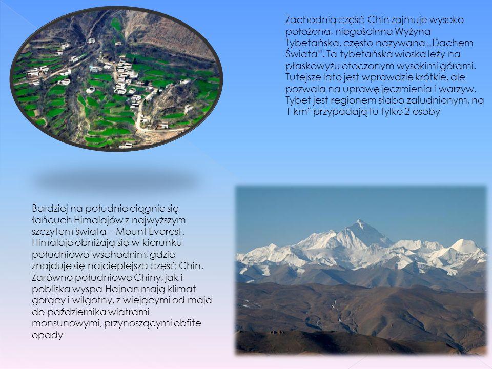 """Zachodnią część Chin zajmuje wysoko położona, niegościnna Wyżyna Tybetańska, często nazywana """"Dachem Świata . Ta tybetańska wioska leży na płaskowyżu otoczonym wysokimi górami. Tutejsze lato jest wprawdzie krótkie, ale pozwala na uprawę jęczmienia i warzyw. Tybet jest regionem słabo zaludnionym, na 1 km² przypadają tu tylko 2 osoby"""