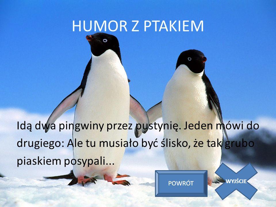 HUMOR Z PTAKIEM Idą dwa pingwiny przez pustynię. Jeden mówi do drugiego: Ale tu musiało być ślisko, że tak grubo piaskiem posypali...