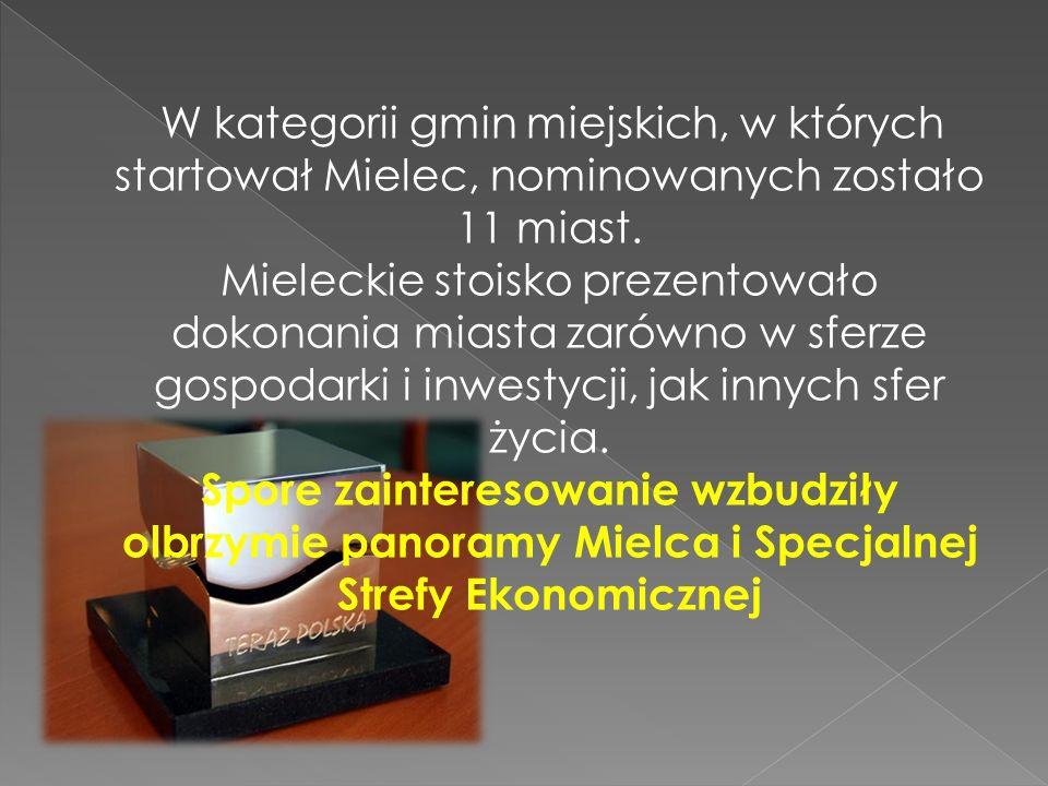 W kategorii gmin miejskich, w których startował Mielec, nominowanych zostało 11 miast.