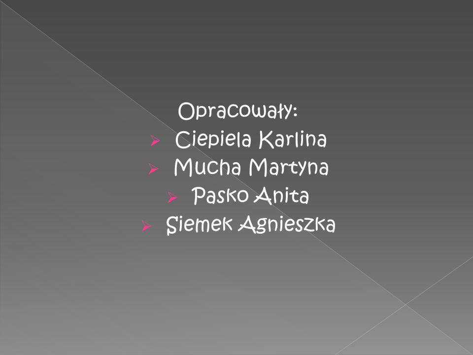 Opracowały: Ciepiela Karlina Mucha Martyna Pasko Anita Siemek Agnieszka