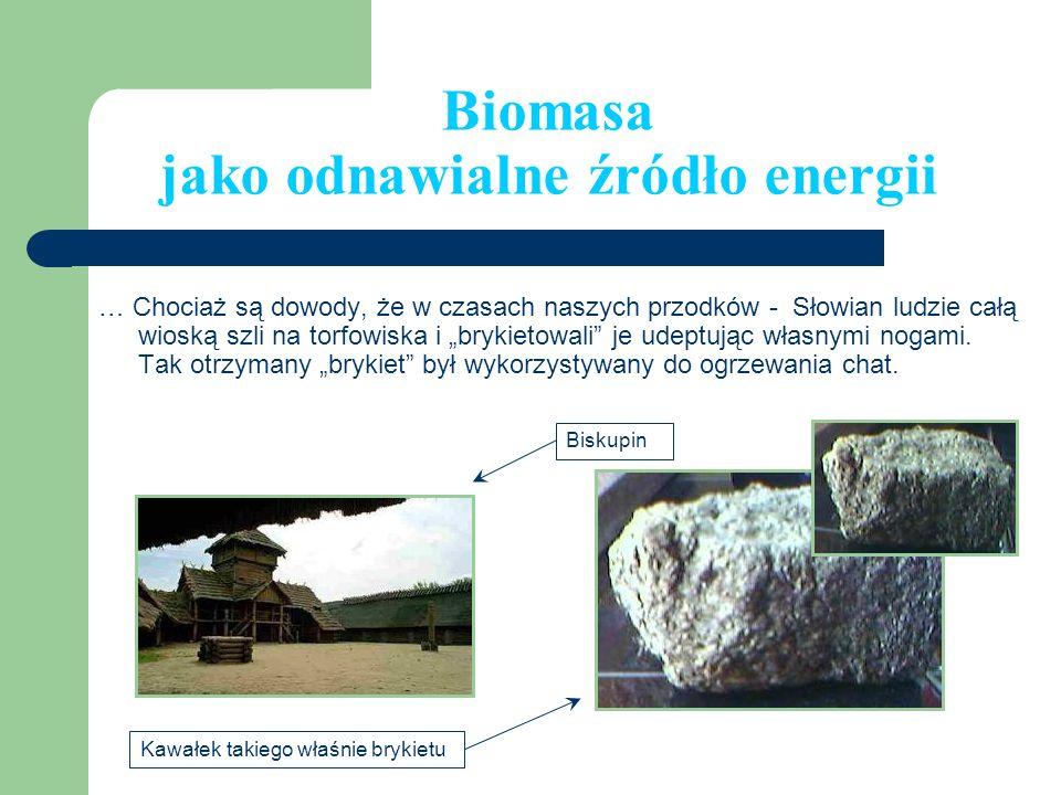 Biomasa jako odnawialne źródło energii
