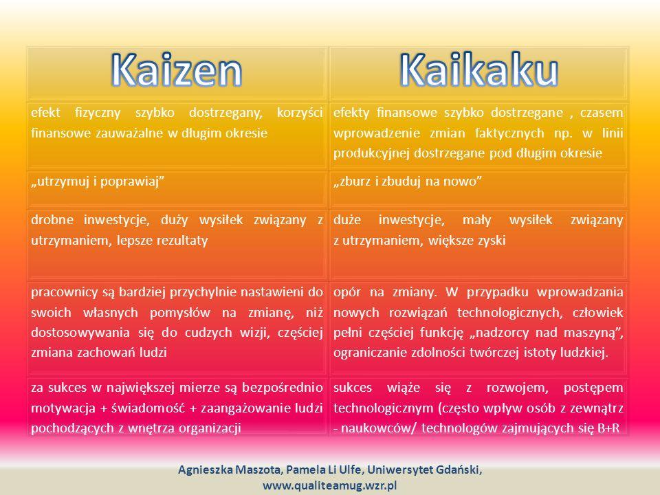 Kaizen Kaikaku. efekt fizyczny szybko dostrzegany, korzyści finansowe zauważalne w długim okresie.
