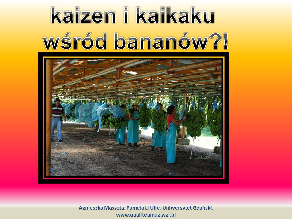 kaizen i kaikaku wśród bananów !