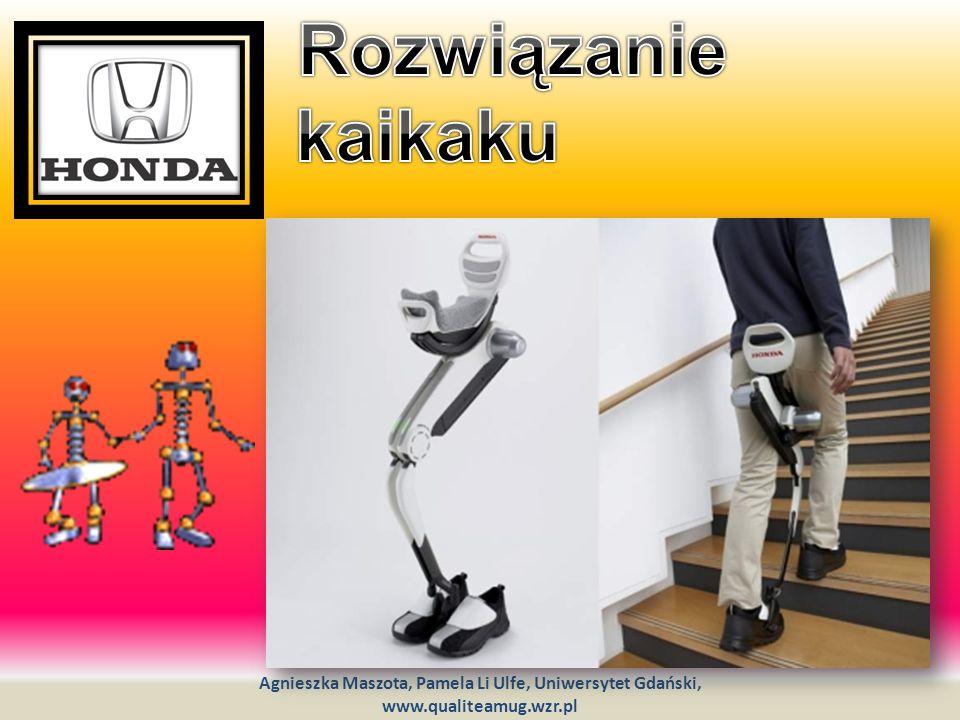 Rozwiązanie kaikaku Agnieszka Maszota, Pamela Li Ulfe, Uniwersytet Gdański, www.qualiteamug.wzr.pl