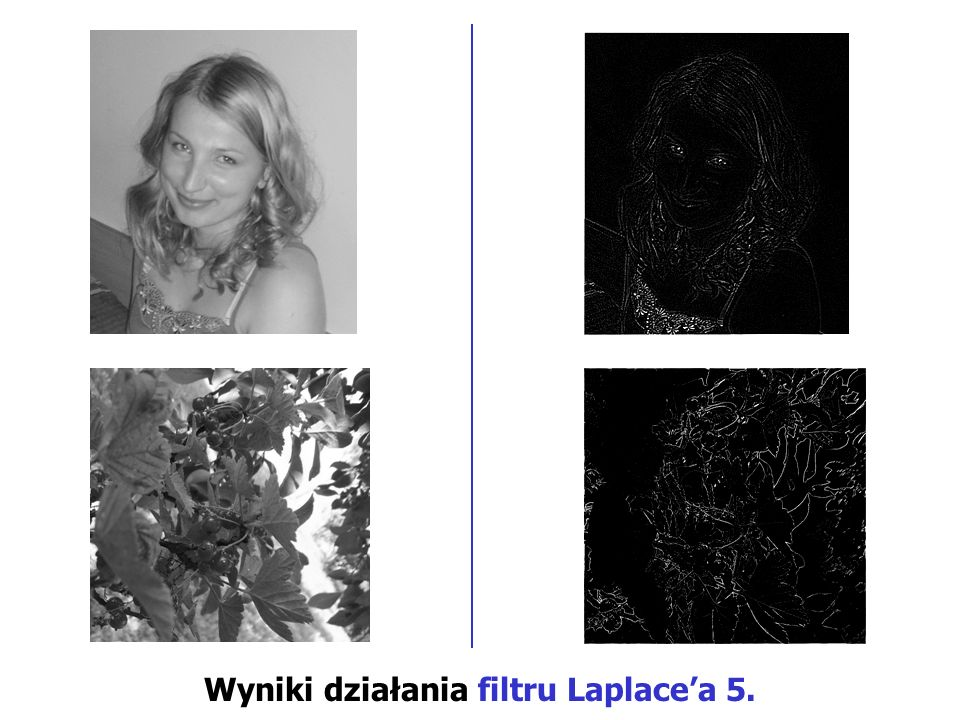Wyniki działania filtru Laplace'a 5.