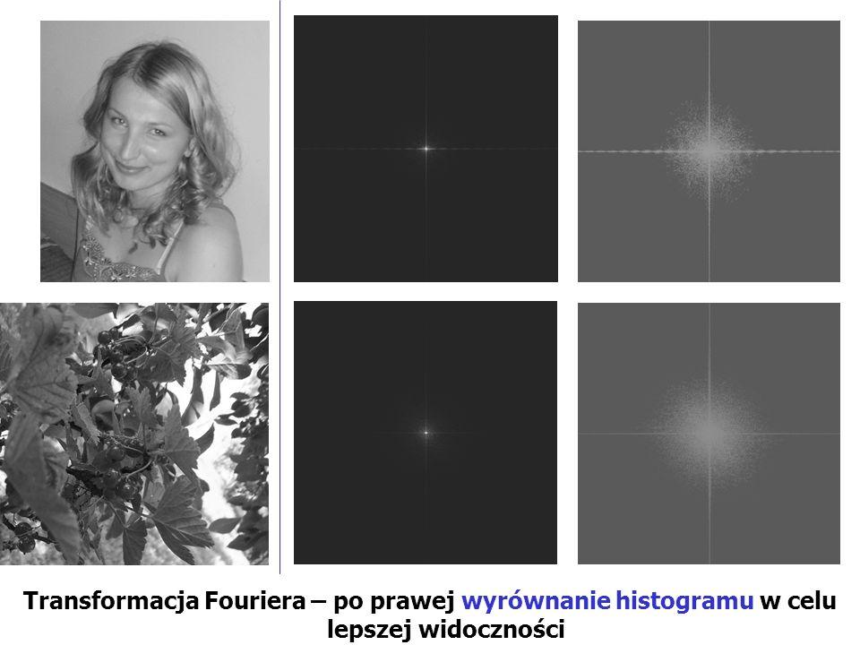 Transformacja Fouriera – po prawej wyrównanie histogramu w celu lepszej widoczności