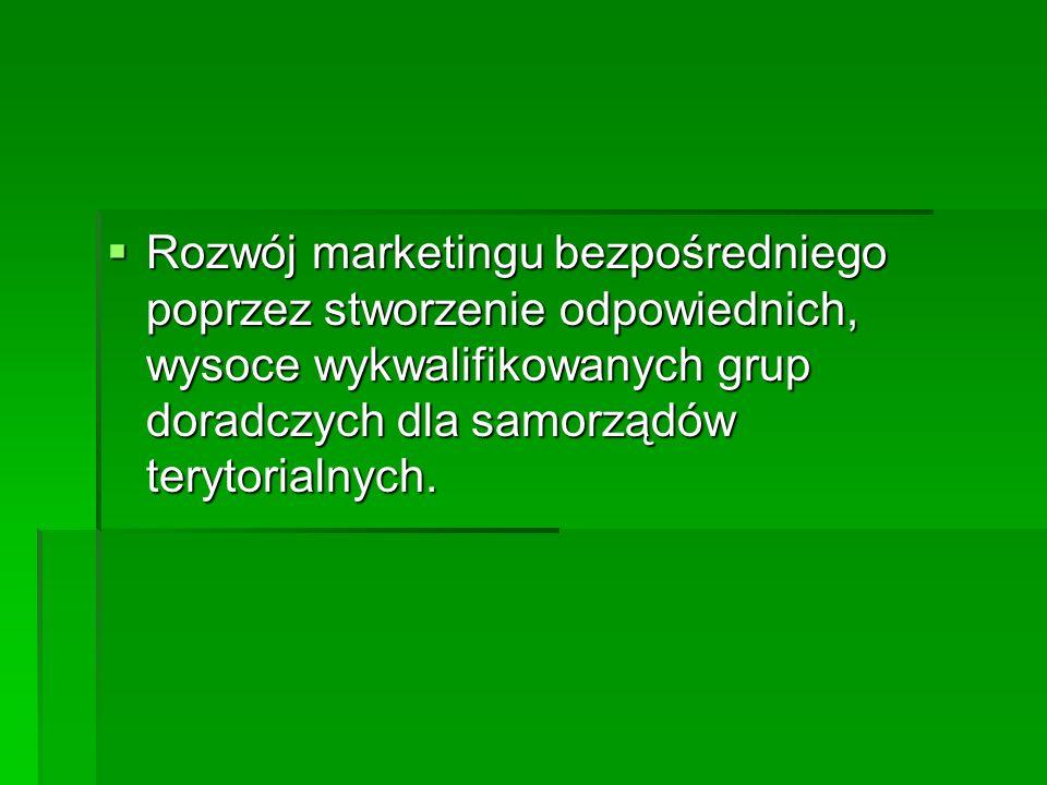 Rozwój marketingu bezpośredniego poprzez stworzenie odpowiednich, wysoce wykwalifikowanych grup doradczych dla samorządów terytorialnych.
