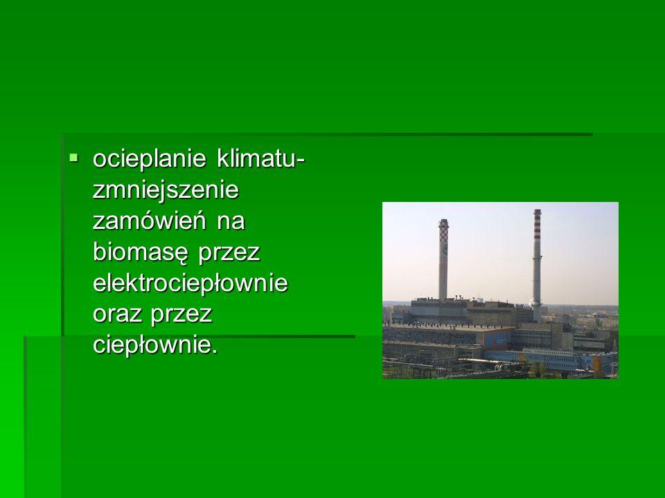 ocieplanie klimatu- zmniejszenie zamówień na biomasę przez elektrociepłownie oraz przez ciepłownie.