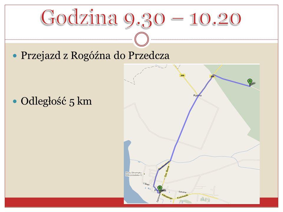 Godzina 9.30 – 10.20 Przejazd z Rogóźna do Przedcza Odległość 5 km