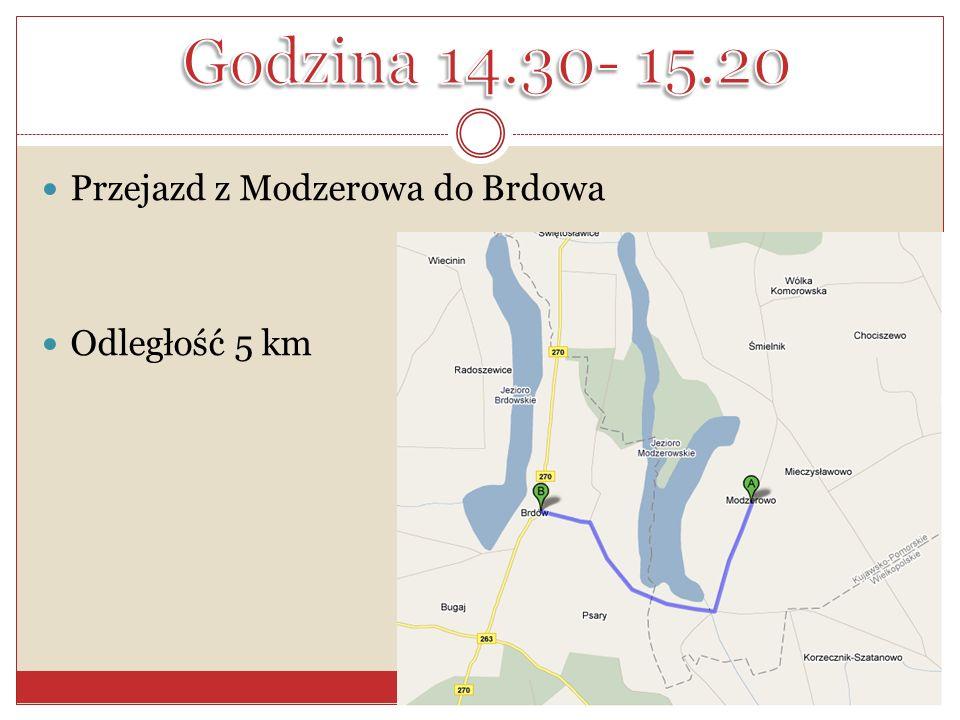 Godzina 14.30- 15.20 Przejazd z Modzerowa do Brdowa Odległość 5 km