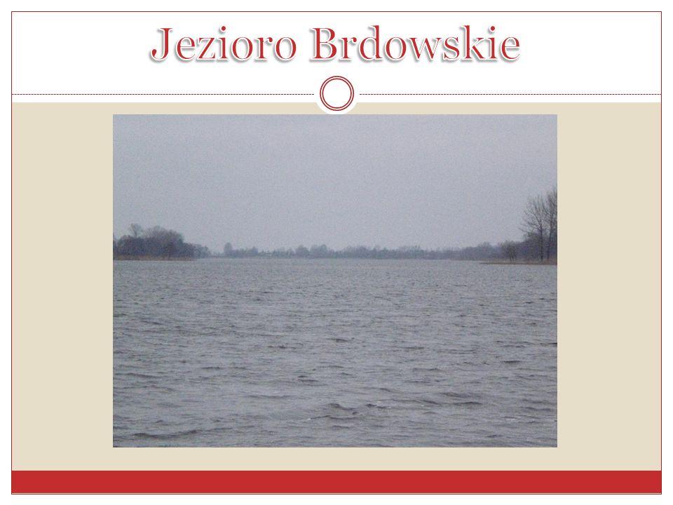 Jezioro Brdowskie