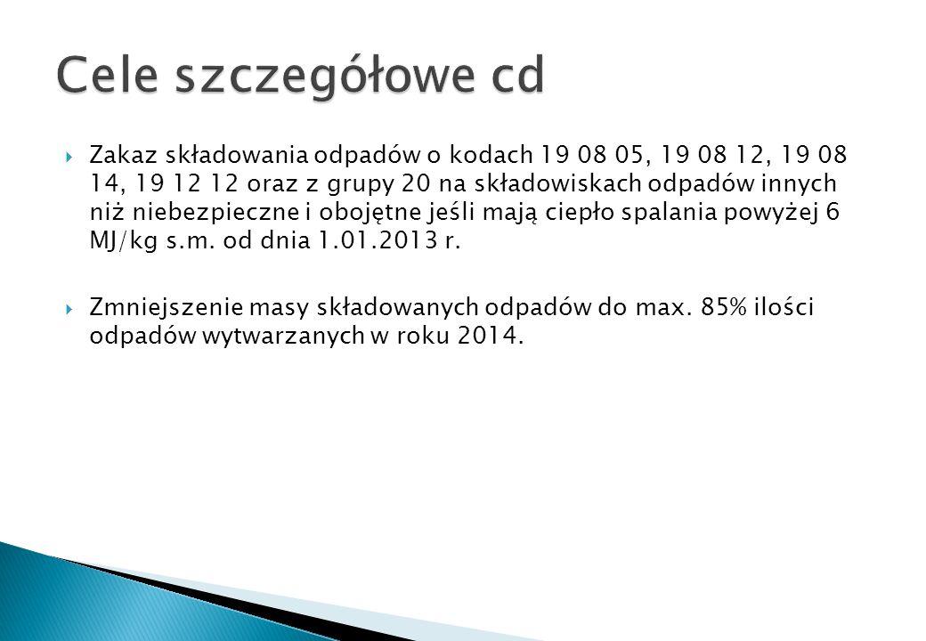 Cele szczegółowe cd