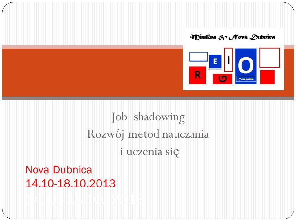 Job shadowing Rozwój metod nauczania i uczenia się