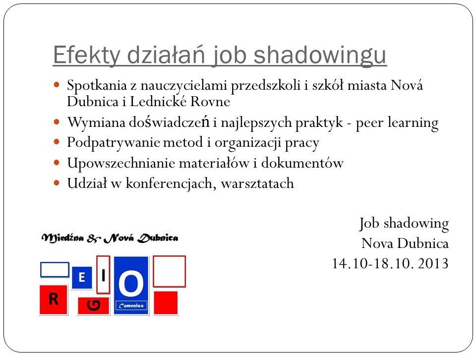 Efekty działań job shadowingu