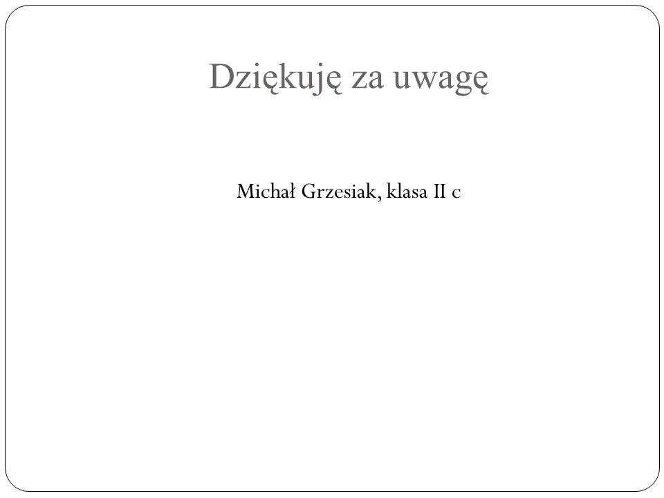 Michał Grzesiak, klasa II c