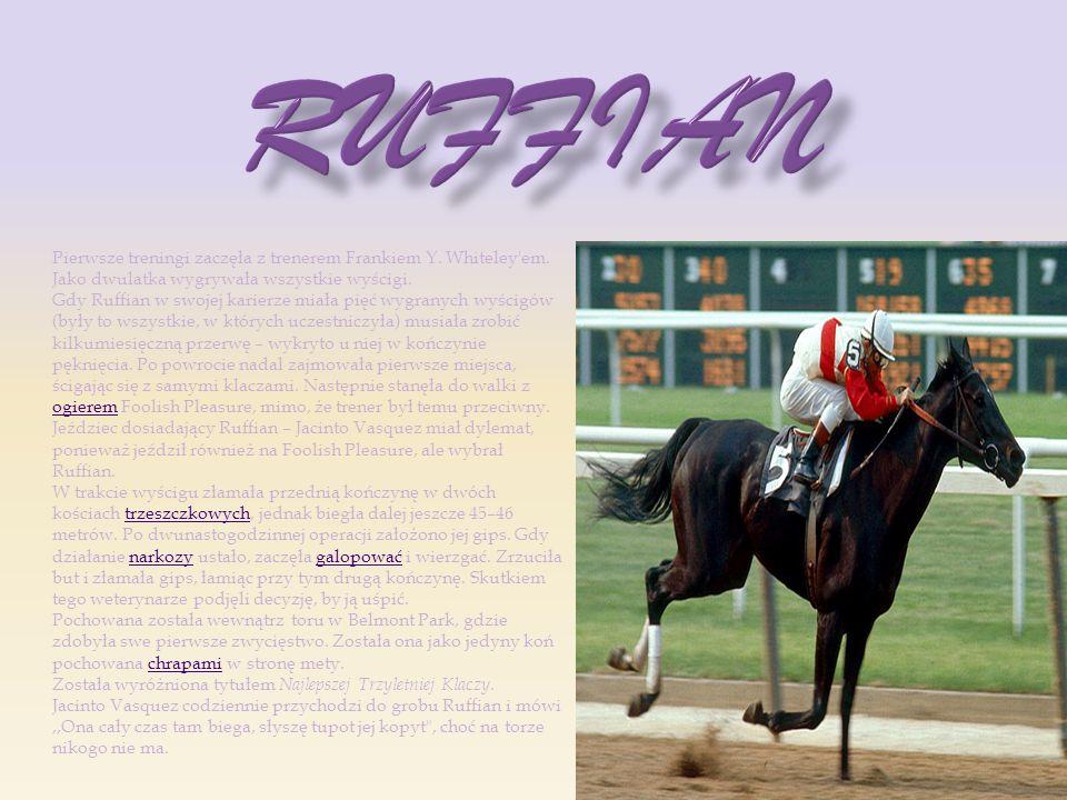 Ruffian Pierwsze treningi zaczęła z trenerem Frankiem Y. Whiteley em. Jako dwulatka wygrywała wszystkie wyścigi.