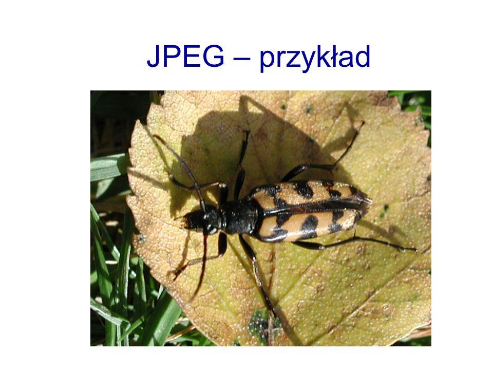 JPEG – przykład