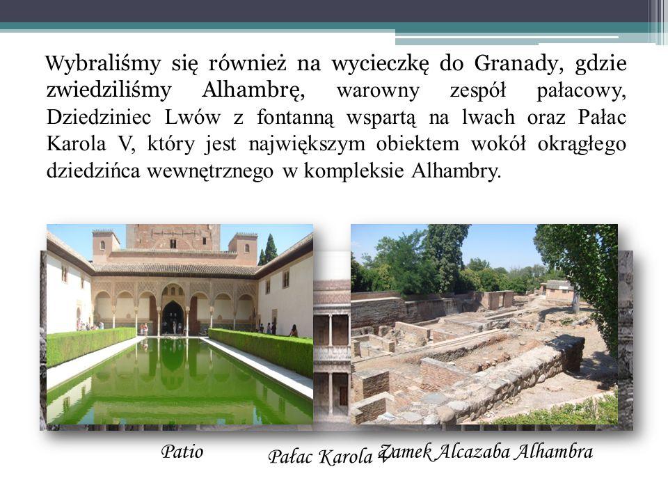 Zamek Alcazaba Alhambra