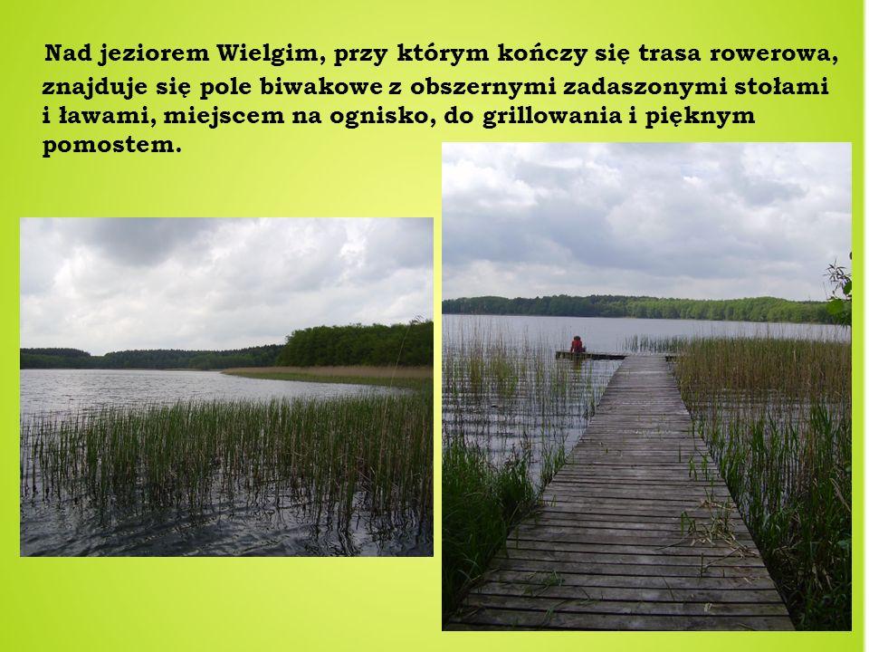 Nad jeziorem Wielgim, przy którym kończy się trasa rowerowa, znajduje się pole biwakowe z obszernymi zadaszonymi stołami i ławami, miejscem na ognisko, do grillowania i pięknym pomostem.