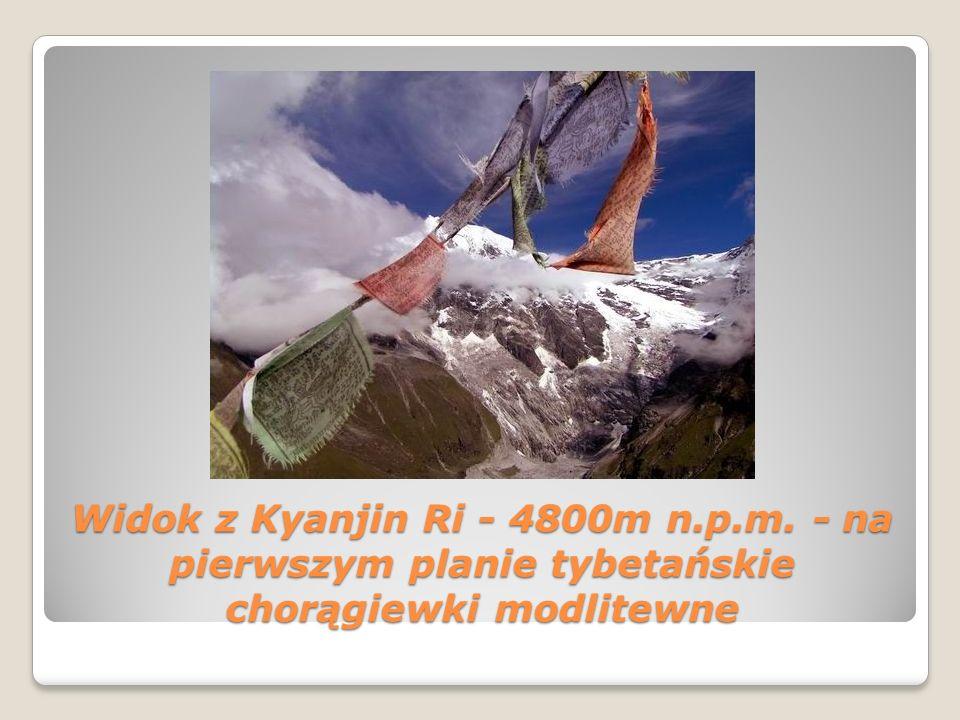 Widok z Kyanjin Ri - 4800m n. p. m
