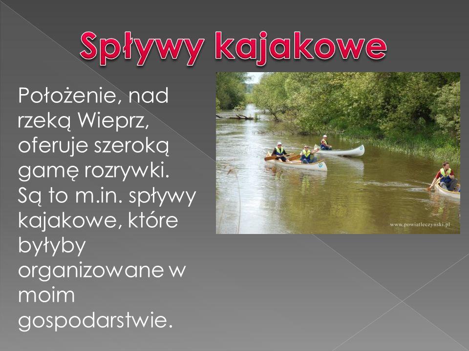 Spływy kajakowe Położenie, nad rzeką Wieprz, oferuje szeroką gamę rozrywki.