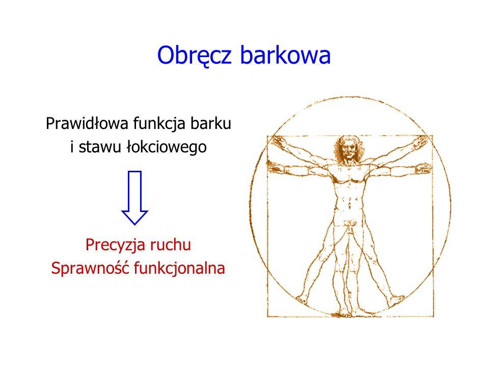Obręcz barkowa Prawidłowa funkcja barku i stawu łokciowego