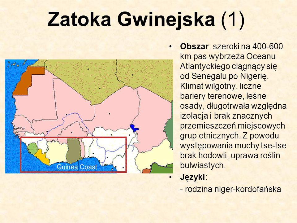 Zatoka Gwinejska (1)