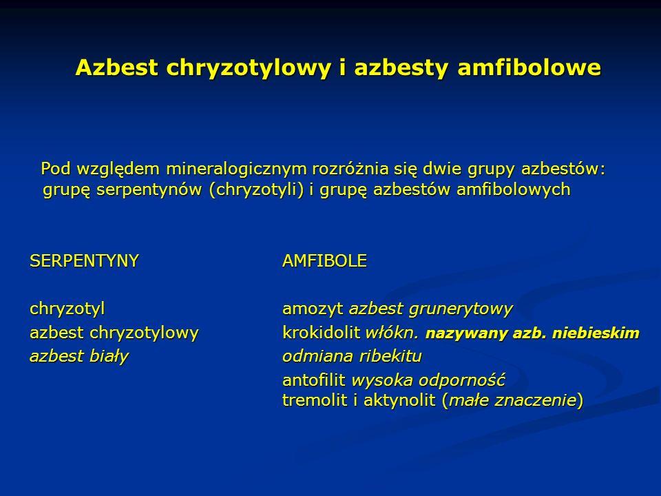 Azbest chryzotylowy i azbesty amfibolowe