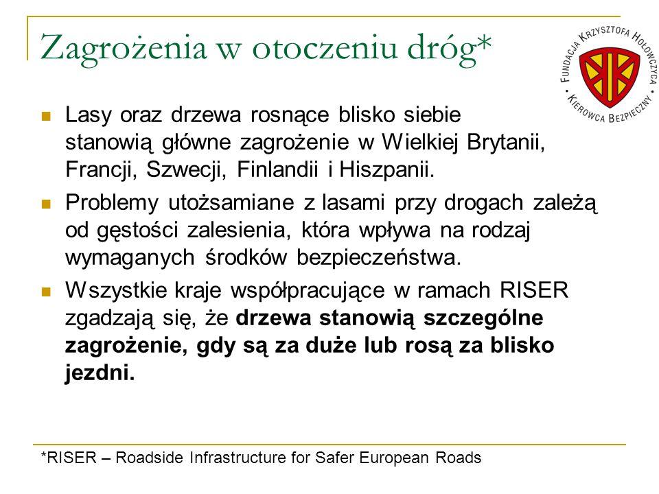 Zagrożenia w otoczeniu dróg*
