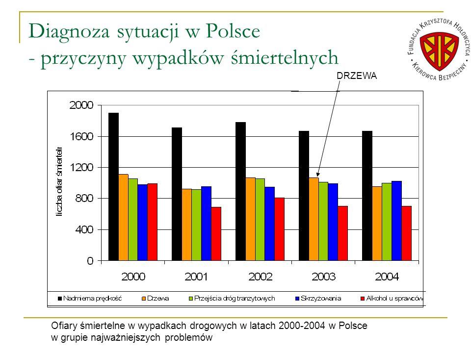 Diagnoza sytuacji w Polsce - przyczyny wypadków śmiertelnych