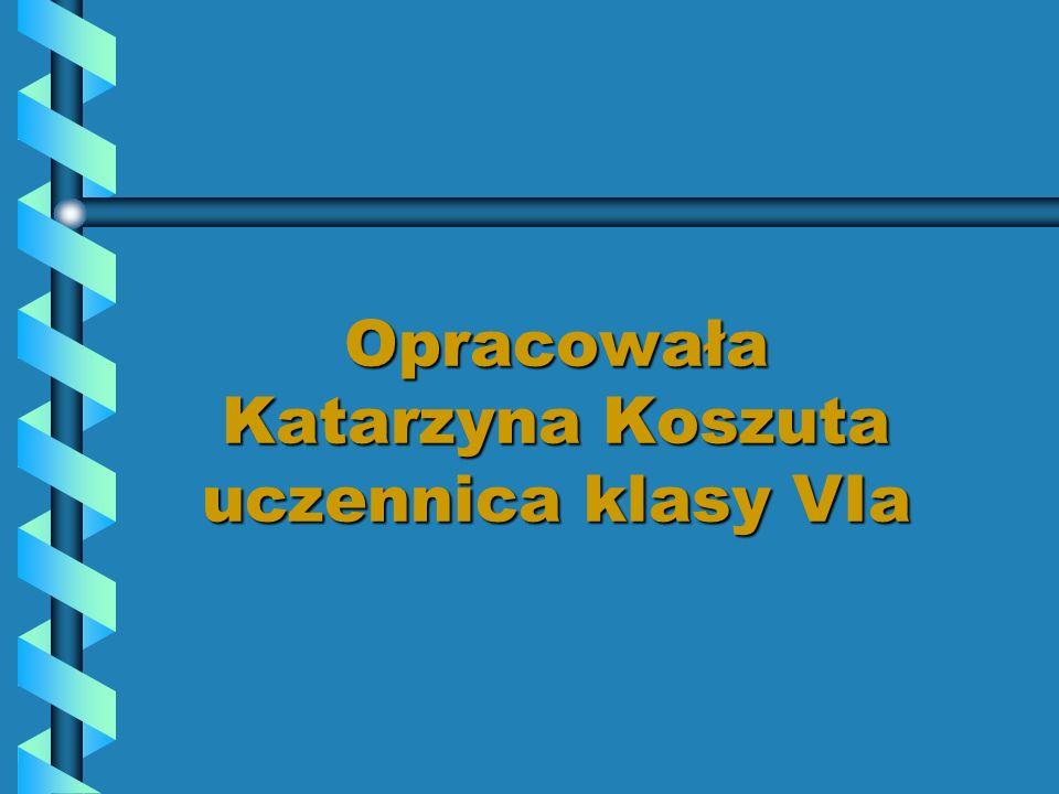 Opracowała Katarzyna Koszuta uczennica klasy VIa