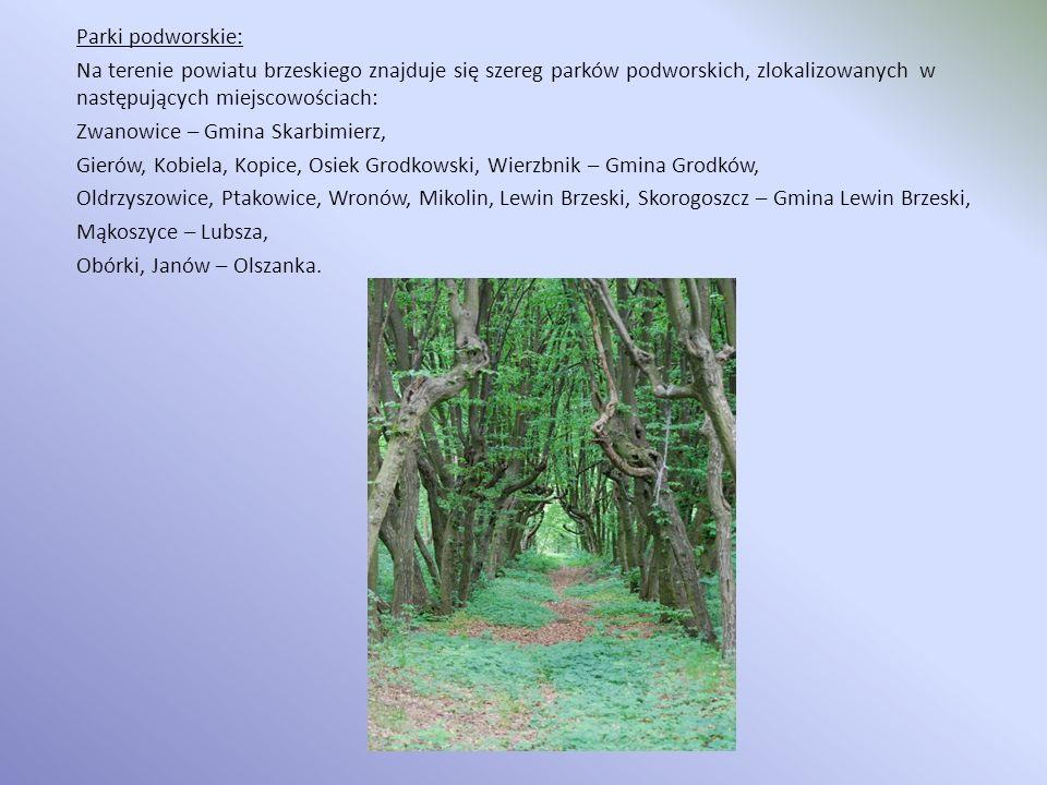Parki podworskie: Na terenie powiatu brzeskiego znajduje się szereg parków podworskich, zlokalizowanych w następujących miejscowościach: Zwanowice – Gmina Skarbimierz, Gierów, Kobiela, Kopice, Osiek Grodkowski, Wierzbnik – Gmina Grodków, Oldrzyszowice, Ptakowice, Wronów, Mikolin, Lewin Brzeski, Skorogoszcz – Gmina Lewin Brzeski, Mąkoszyce – Lubsza, Obórki, Janów – Olszanka.