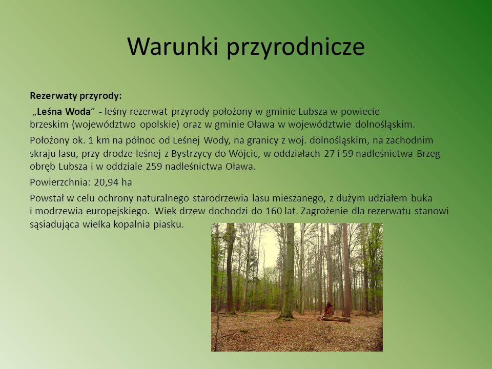 Warunki przyrodnicze