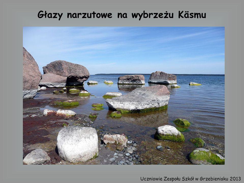 Głazy narzutowe na wybrzeżu Käsmu