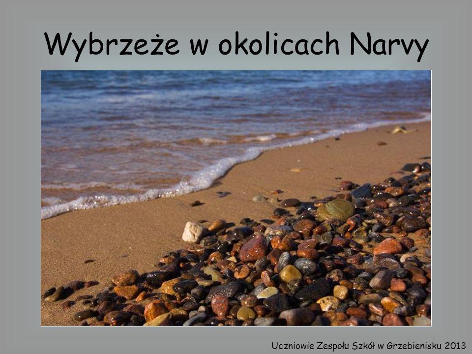 Wybrzeże w okolicach Narvy