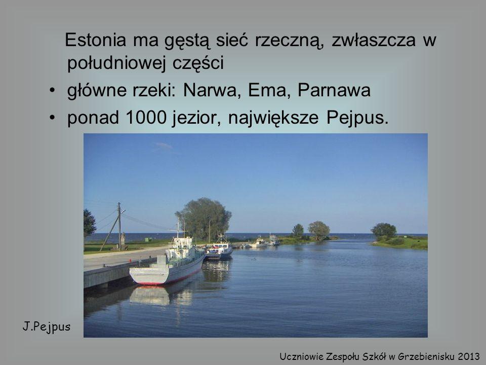 Estonia ma gęstą sieć rzeczną, zwłaszcza w południowej części