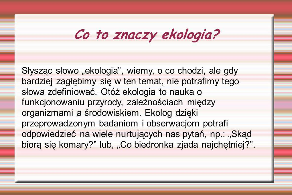 Co to znaczy ekologia